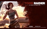 Tomb Raider 15-Jahr-Feier HD Wallpapers #16