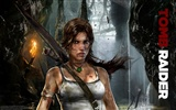 Tomb Raider 9 HD wallpapers #1