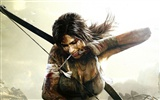 Tomb Raider 9 HD wallpapers #2