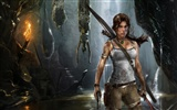 Tomb Raider 9 HD wallpapers #3