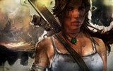 Tomb Raider 9 HD wallpapers #5