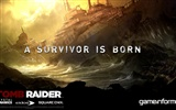 Tomb Raider 9 HD wallpapers #6