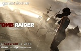 Tomb Raider 9 HD wallpapers #7