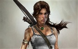 Tomb Raider 9 HD wallpapers #10