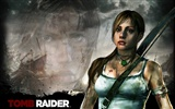 Tomb Raider 9 HD wallpapers #11