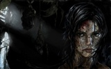 Tomb Raider 9 HD wallpapers #12