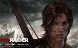 Tomb Raider 9 HD wallpapers #14