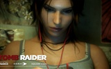 Tomb Raider 9 HD wallpapers #15