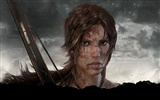 Tomb Raider 9 HD wallpapers #16