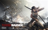 Tomb Raider 9 HD wallpapers #17