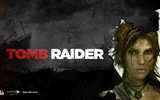 Tomb Raider 9 HD wallpapers #18