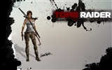 Tomb Raider 9 HD wallpapers #19