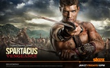 Spartacus: Vengeance HD Wallpaper