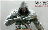 Assassin's Creed: Revelations HD wallpapers #9