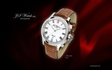 World famous watches wallpapers (2)