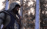 Assassin's Creed 3 刺客信条3 高清壁纸3