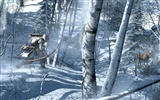 Assassin's Creed 3 刺客信条3 高清壁纸10