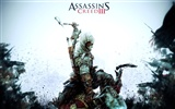 Assassin's Creed 3 刺客信条3 高清壁纸15