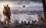 Assassin's Creed 3 刺客信条3 高清壁纸17
