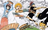 BLEACH HD anime wallpapers