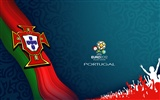 UEFA EURO 2012 HD Wallpaper (1) #11