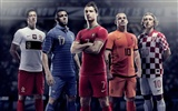 UEFA EURO 2012 HD Wallpaper (1) #13