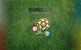 UEFA EURO 2012 HD Wallpaper (1) #15