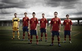 UEFA EURO 2012 HD wallpapers (2) #8