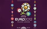 UEFA EURO 2012 HD wallpapers (2) #12