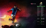 UEFA EURO 2012 HD wallpapers (2) #18