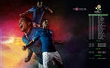 UEFA EURO 2012 HD wallpapers (2) #19