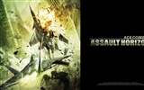 Ace Combat: Assault Horizon HD wallpapers #1