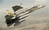 Ace Combat: Assault Horizon HD wallpapers #8