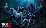 True Blood TV-Serie HD Wallpaper