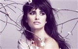 Penelope Cruz HD wallpapers #25