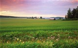 Windows 7 Wallpapers: Nordic Landscapes #9