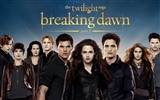 The Twilight Saga: Breaking Dawn fonds d'écran HD
