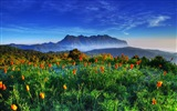 Windows 8 Theme Wallpaper: schöne Landschaft in Thailand