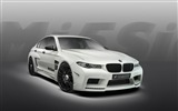 2013 Hamann M5 Mi5sion Luxus-Auto HD Wallpaper
