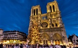 Notre Dame HD Wallpapers #7