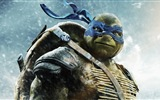2014 Teenage Mutant Ninja Turtles films HD fonds d'écran