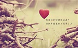 The theme of love, creative heart-shaped HD wallpapers #7