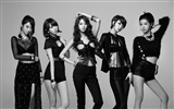 El grupo femenino de Corea wallpapers Nine Muses HD #4