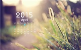 Kalender 2015 HD Wallpaper