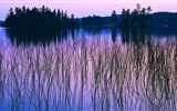 Hermosos colores de la naturaleza wallpapers HD