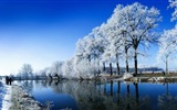Winter snow beautiful scenery HD wallpapers #1