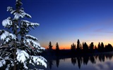 Winter snow beautiful scenery HD wallpapers #10