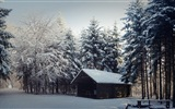 Winter snow beautiful scenery HD wallpapers #12