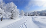 Winter snow beautiful scenery HD wallpapers #14