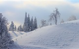 Winter snow beautiful scenery HD wallpapers #16